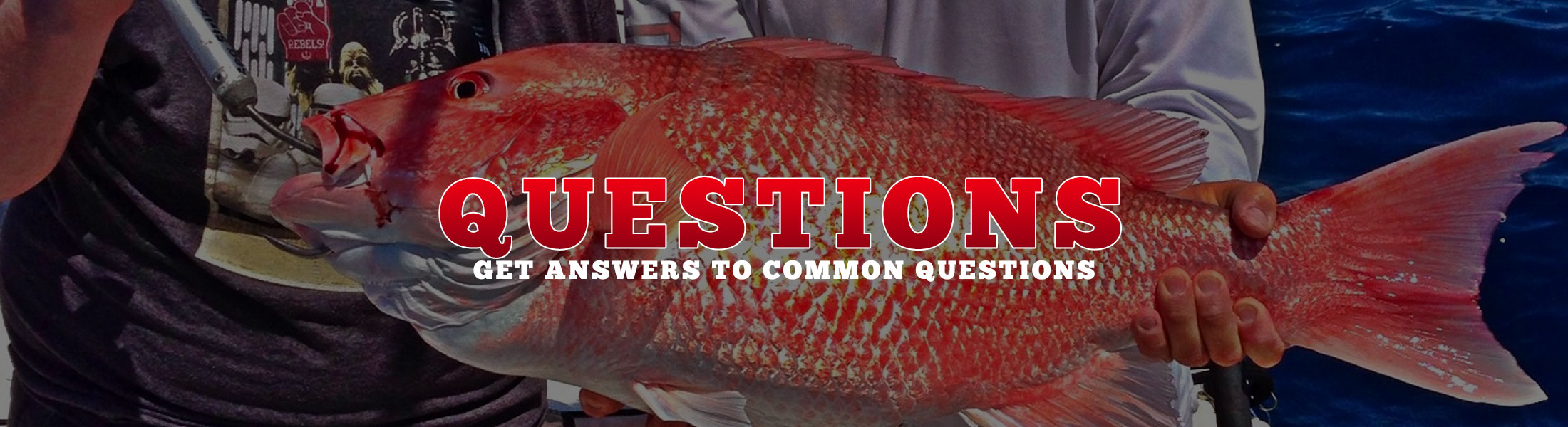 Get answers to your most common questions.
