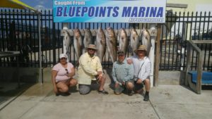 Family with limit of Amberjack