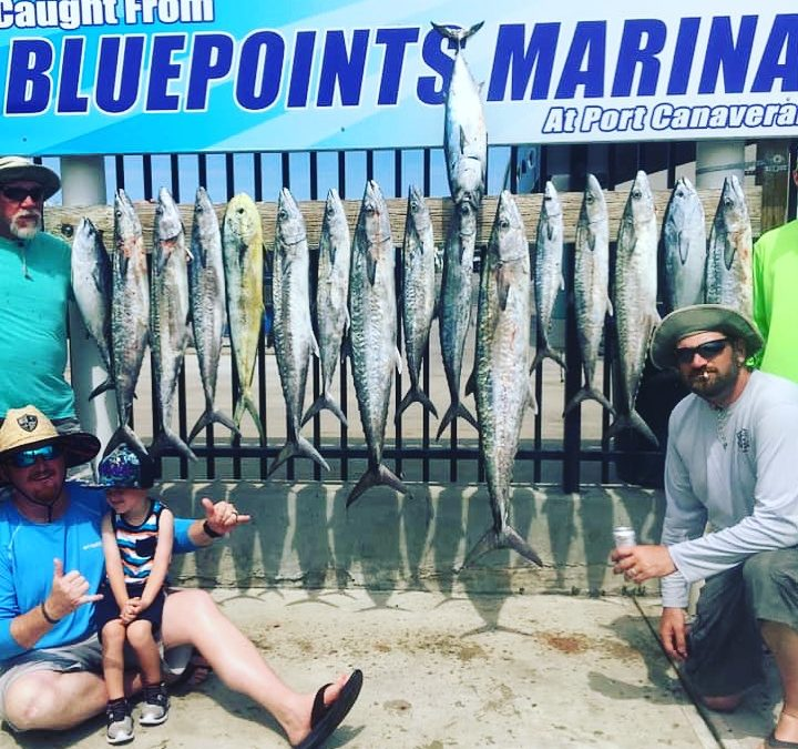 Fired Up Fishing Report – October 2019